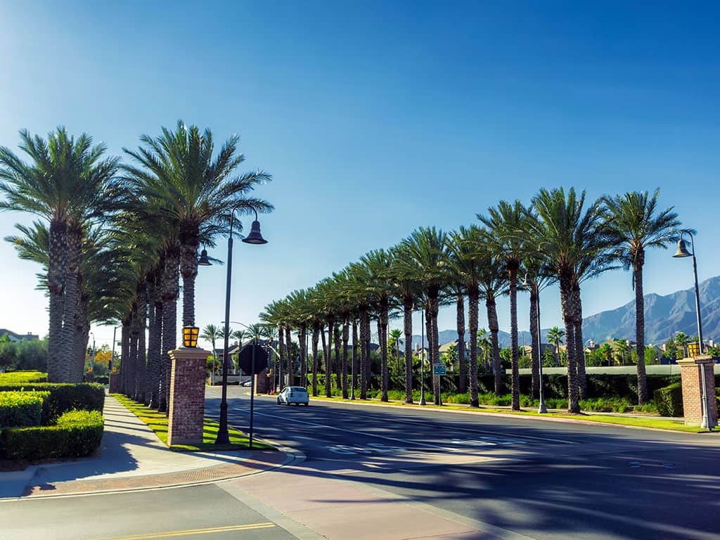 palm tree lined street in Ontario California