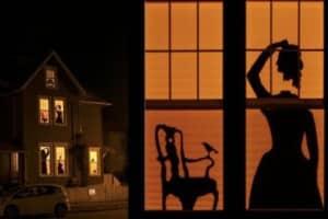 Halloween-Decorations-Storage-window-silhouettes
