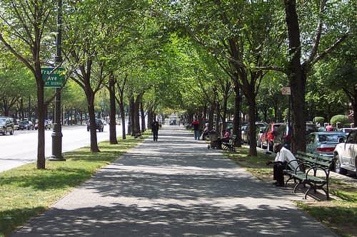Walkable neighborhoods in Brooklyn, NY