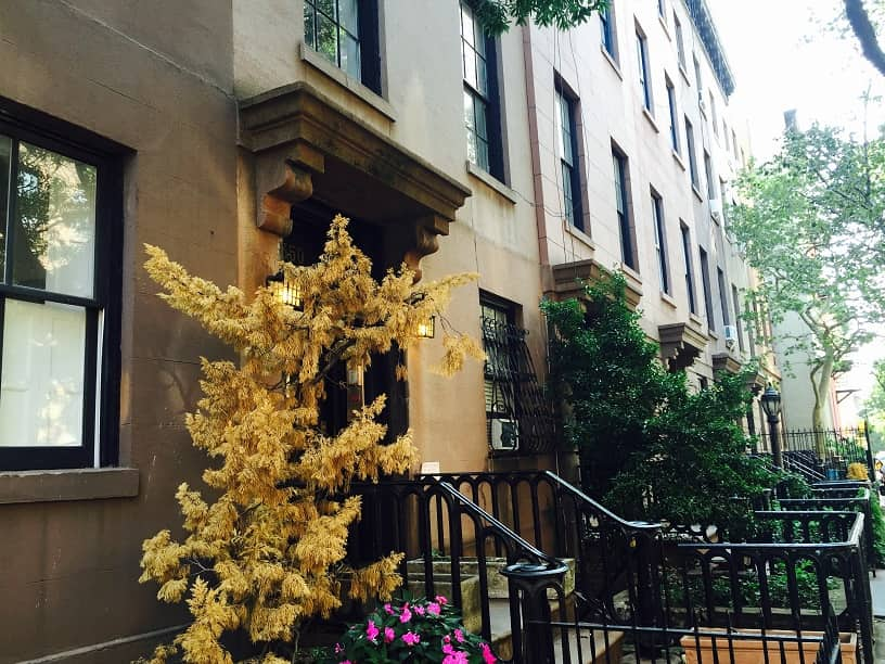 Treelined street with brownstones in Chelsea NYC