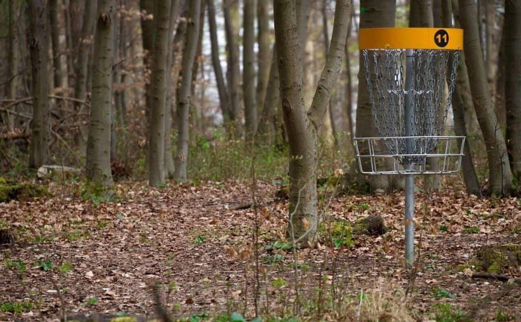 Disc golf goal in the park