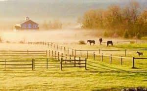 Glamping at Mountain Horse Farm