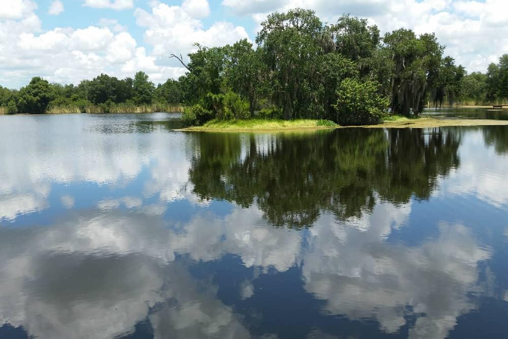A lake in Pasco County, Florida