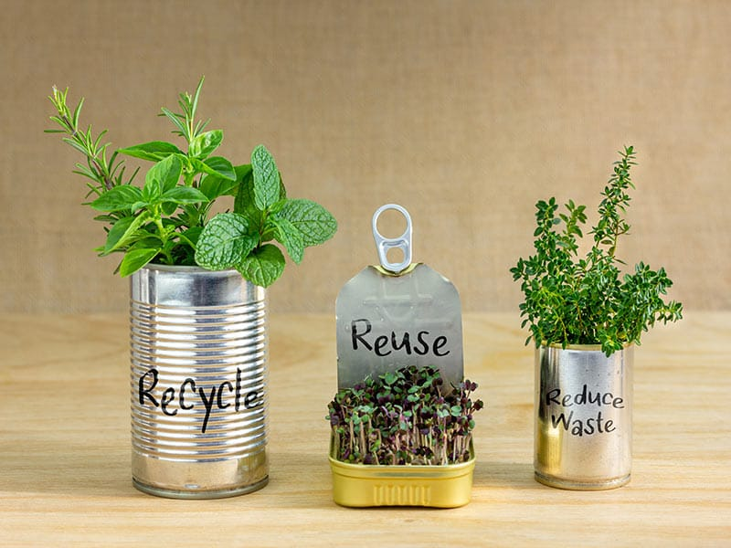 20 Creative Ideas for Repurposed Plastic Containers Blog Image