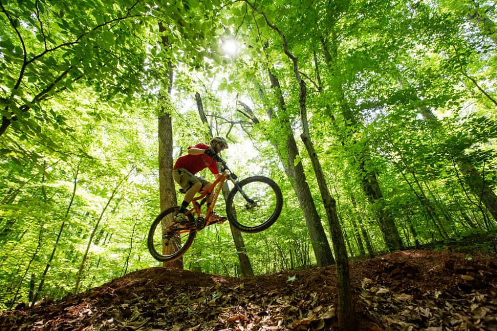 Mountain biker in Virginia