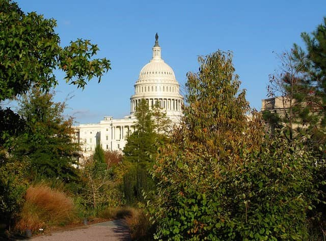 Best Neighborhoods in D.C.: Capitol Hill
