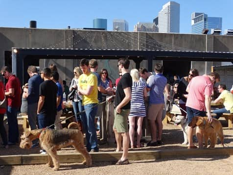 people hanging out on a dog-friendly patio in Houston