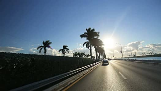 cars driving on the highway with palm trees along the side