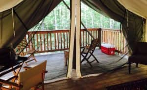 Glamping at Firelight Camps