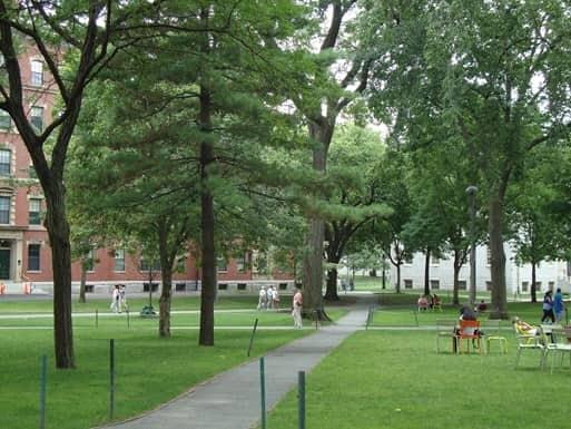 people walking around Harvard in Boston, MA