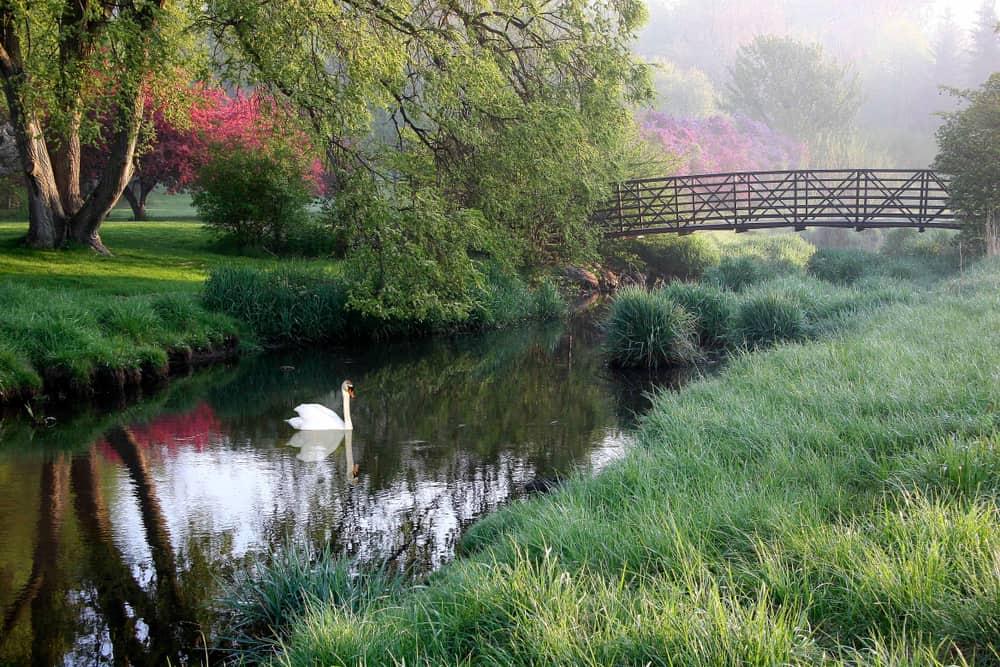 Milham Park in Kalamazoo MI