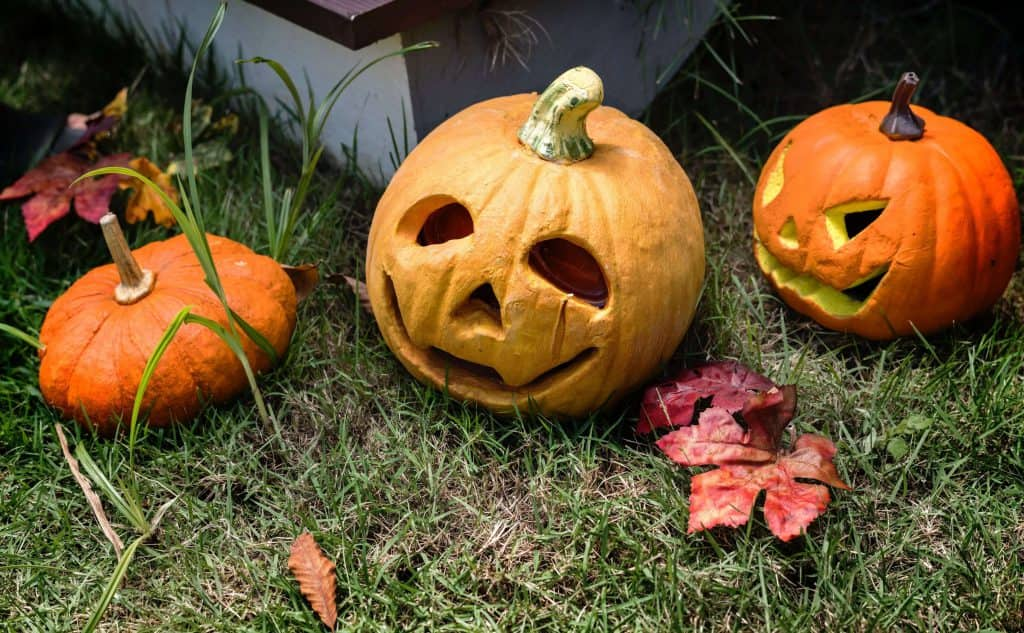 Halloween pumpkins used as outdoor decorations