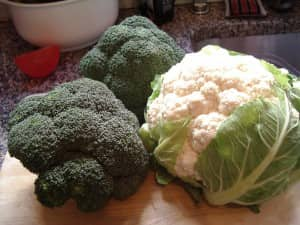 vegetable-storage-crisper