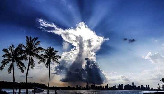 Winter in Miami, FL